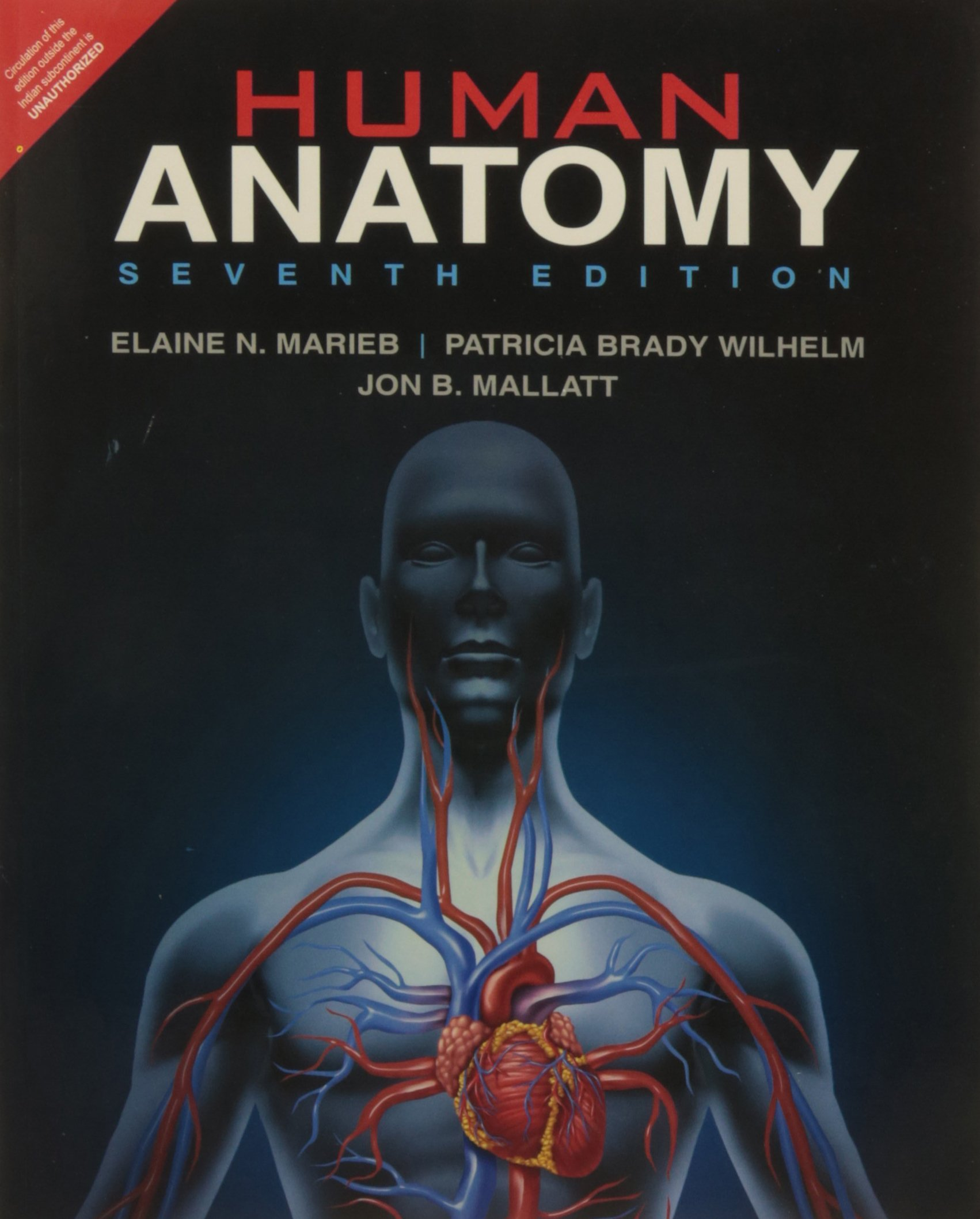 Buy Human Anatomy 7e Book Online At Low Prices In India Human