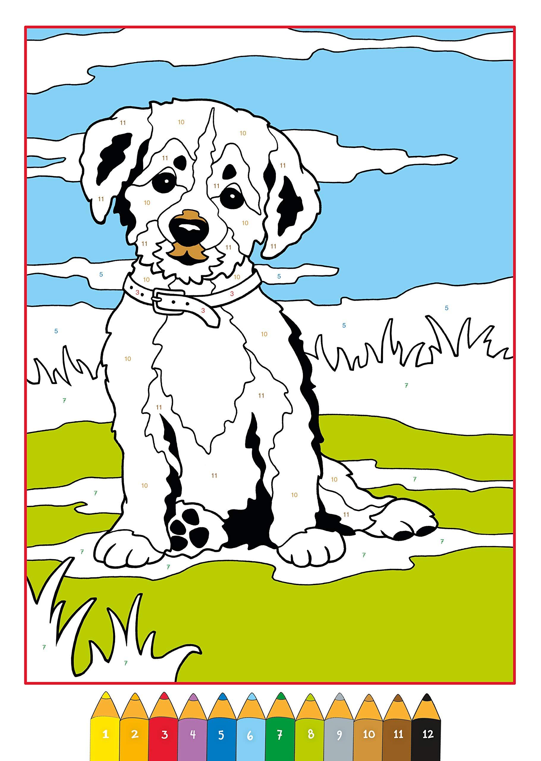 Zum malen hund zahlen nach ausdrucken Kostenlose Ausmalbilder