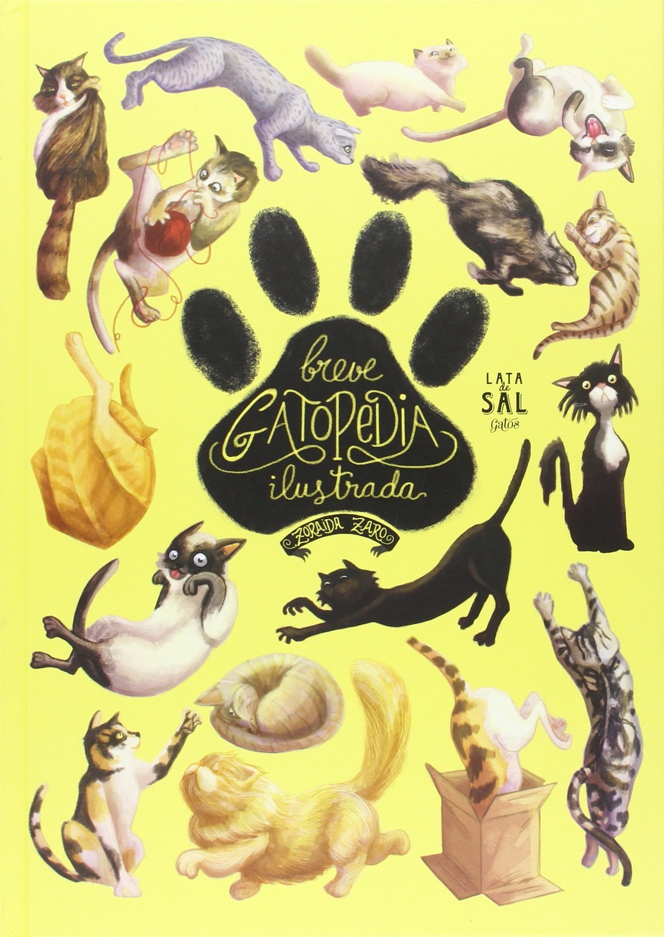 Breve Gatopedia Ilustrada (Galician) Hardcover – 2016