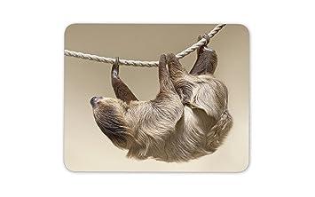 Lazy linda pereza tapete de ratones Cojín: Amazon.es ...