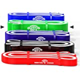 WODFitters Titanium Resistance Bands/Pull Up Bands - Heavy Duty Power Bands for Pull Up Assistance, Mobility Exercises, Workout, Exercise and Cross Training - Single Band