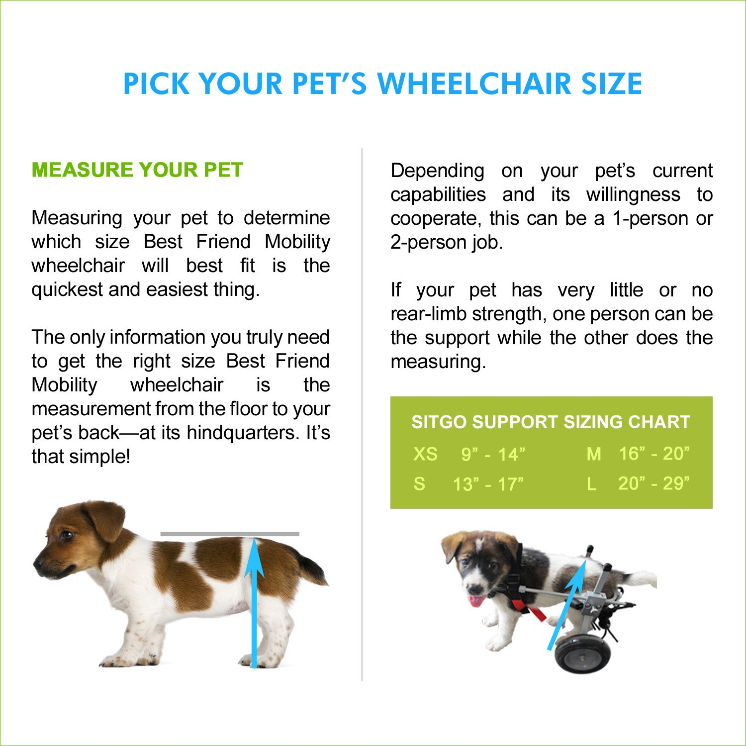 Amazon sitgo dog pet wheelchair revolution all sizes s amazon sitgo dog pet wheelchair revolution all sizes s pet supplies nvjuhfo Images