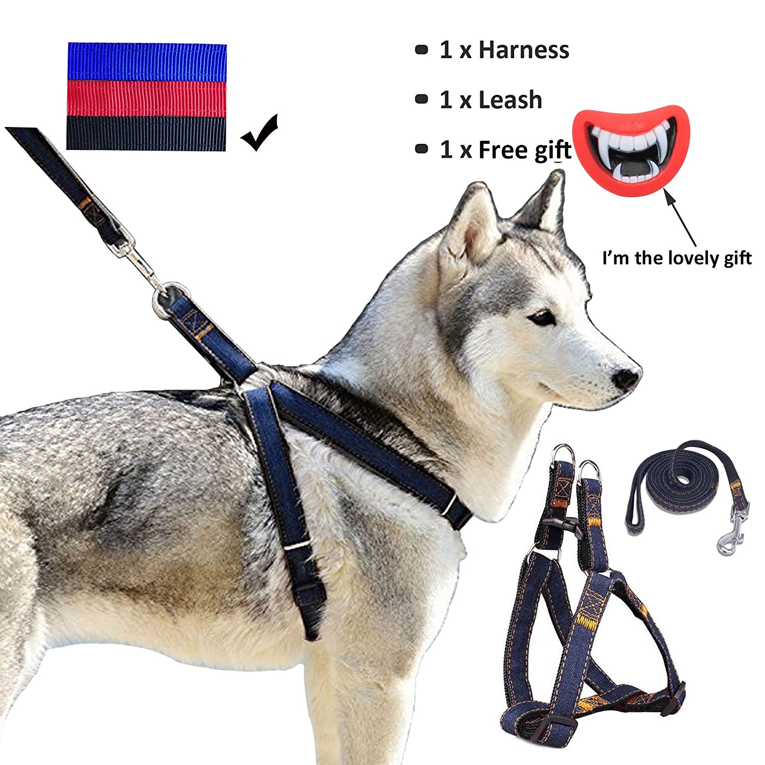 Pet Supplies : Whippy Durable Dog Leash Harness for Dogs, Heavy Duty