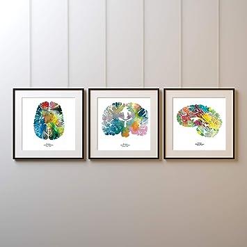 Amazoncom J Sayuri Human Brain Art Set Of Three 12 X 12