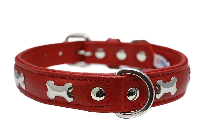 Angel Pet Supplies Leather Bones  Dog Collar, 20  x 1 , Valentine Red