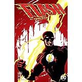 Flash by Mark Waid: Book Five (The Flash (1987-2009))