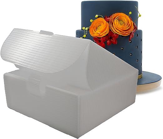 Cake Porter interior conjuntos de caja para transportar tartas ...