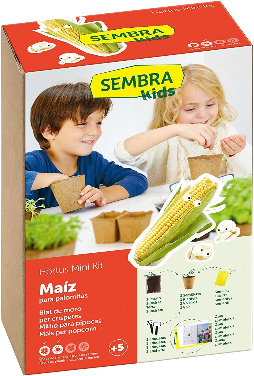 SEMBRA - juego educativo, Kit huerto Fresón: Amazon.es: Jardín