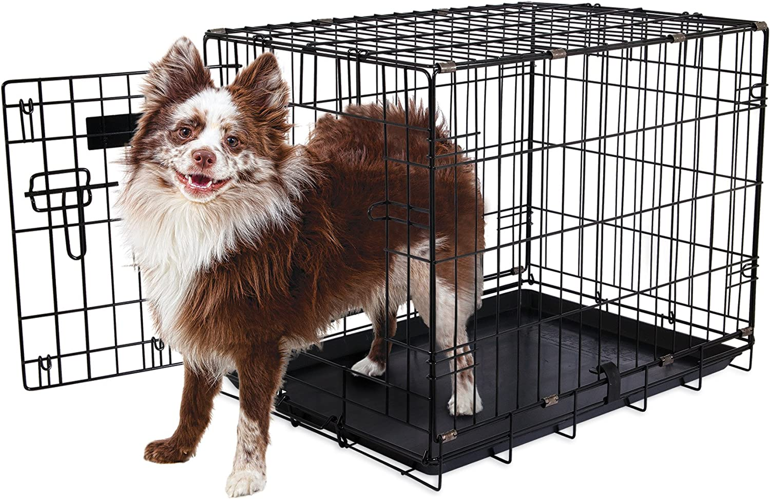 Aspen Pet Single-Door Home Training Crate