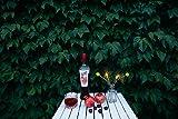 California Fruit Wine Co, Sangria Pomegranate