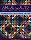 Amish Quilts The Adventure Continues: Featuring 21 Projects from Traditional to Modern