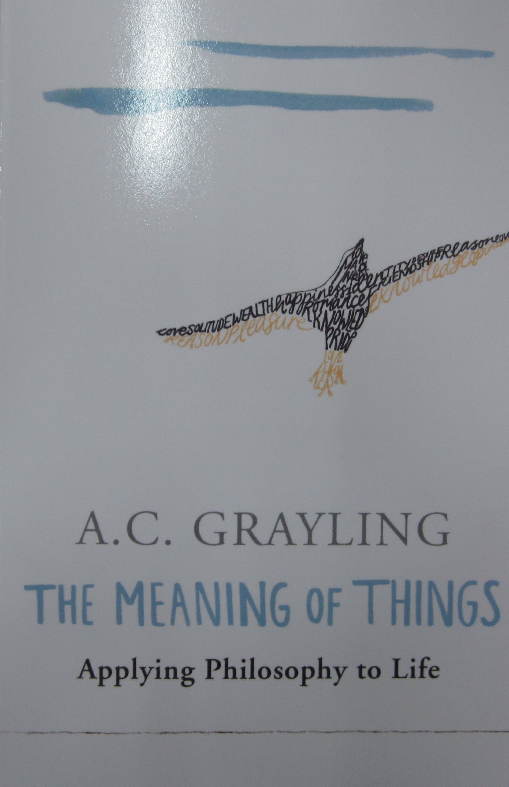 the meaning of things applying philosophy to life a c grayling the meaning of things applying philosophy to life a c grayling 9780753813591 com books