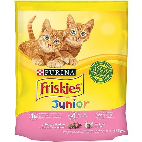 Friskies Junior pienso para el Gato, con Pollo, Leche y Verduras aggiunte, 375 g – Paquete de 12 Unidades