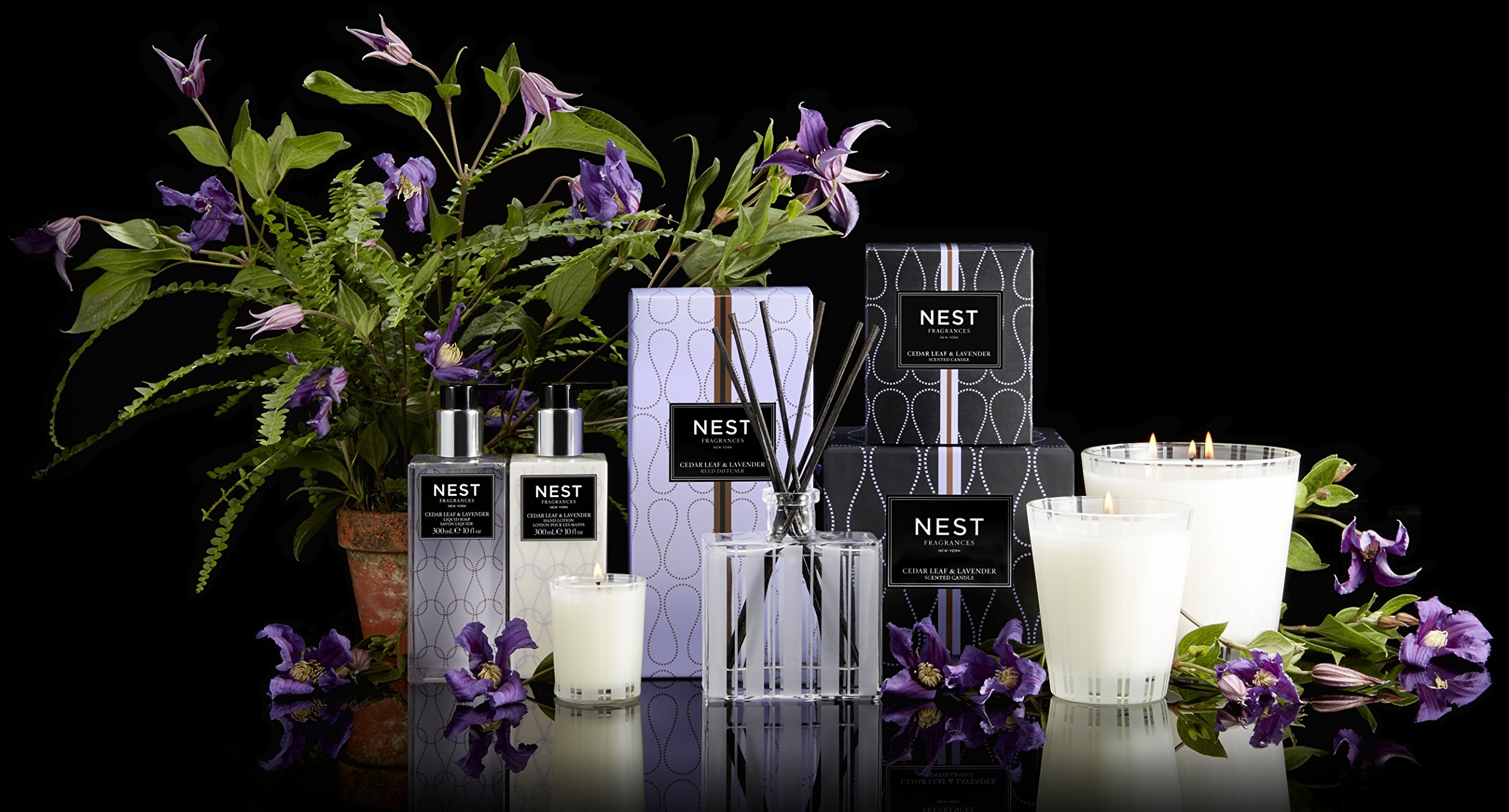 NEST Fragrances Classic Candle- Cedar Leaf & Lavendar, 8.1 oz by NEST Fragrances (Image #3)
