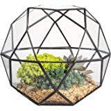 Modern Handmade Artistic Glass Geometric Dome Terrarium Triangular Pentagon Mix 32-Sides Indoor Succulent Air plants Holder Balcony Miniature Decor Centerpiece