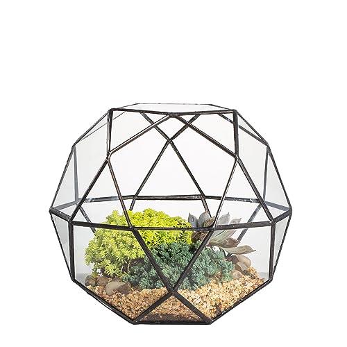 NCYP Clear Glass Geometric Terrarium Modern Artistic Triangular Pentagon Mix 32-Sides Display Succulent Fern Moss Bonsai Flower Pot Centerpiece 20CM