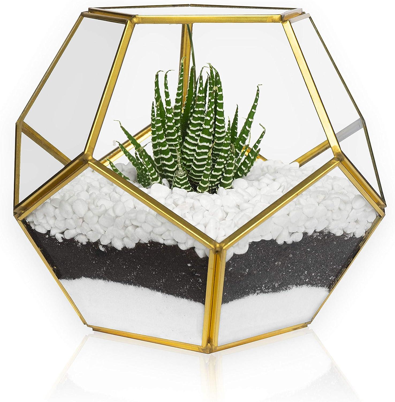 MOCTUS Glass Geometric Terrarium - Succulent Planter - Brass Container Box for Garden/Outdoor/Indoor/Home Decoration, Wedding Gift, Centerpiece - Gold Sphere Pot Holder for Display/Tabletop/Desktop
