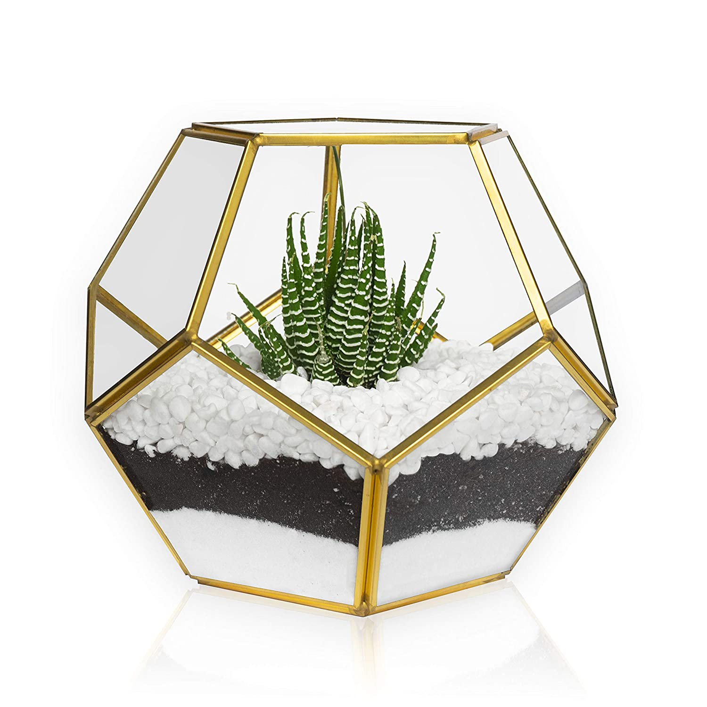 MOCTUS Glass Geometric Terrarium – Succulent Planter – Brass Container Box for Garden Outdoor Indoor Home Decoration, Wedding Gift, Centerpiece – Gold Sphere Pot Holder for Display Tabletop Desktop
