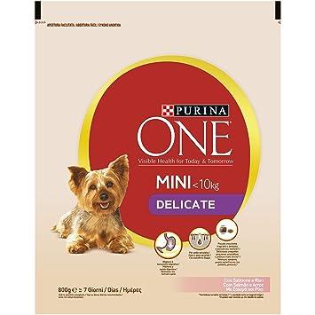 Purina ONE DD My Dog Is Delicate salmpurina One con arroz 800 g - 8 Unidades: Amazon.es: Productos para mascotas