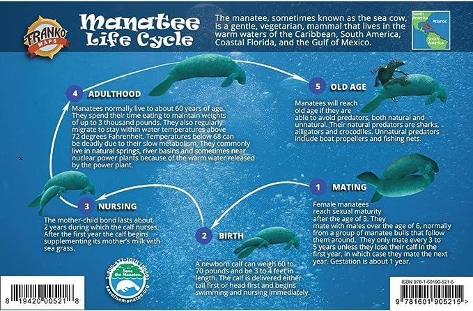 Franko Maps Manatee - Guía de Ciclo de Vida (5,5 x 8,5 Pulgadas): Amazon.es: Deportes y aire libre