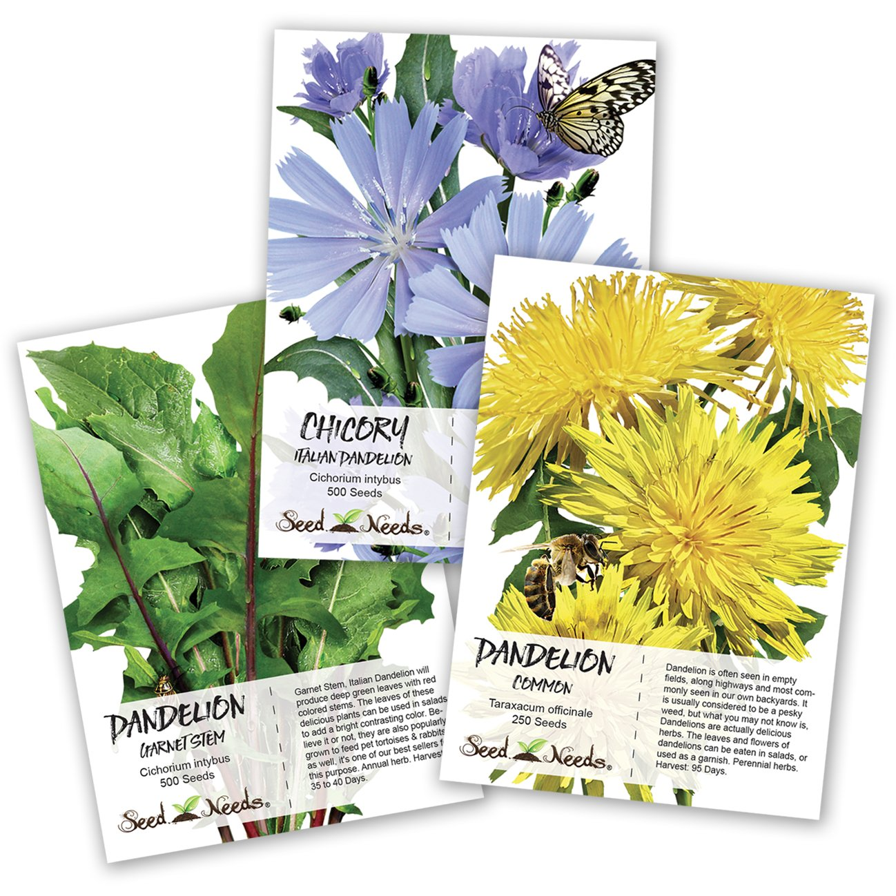 Amazon Dandelion Seed Packet Collection 3 Package Set Non