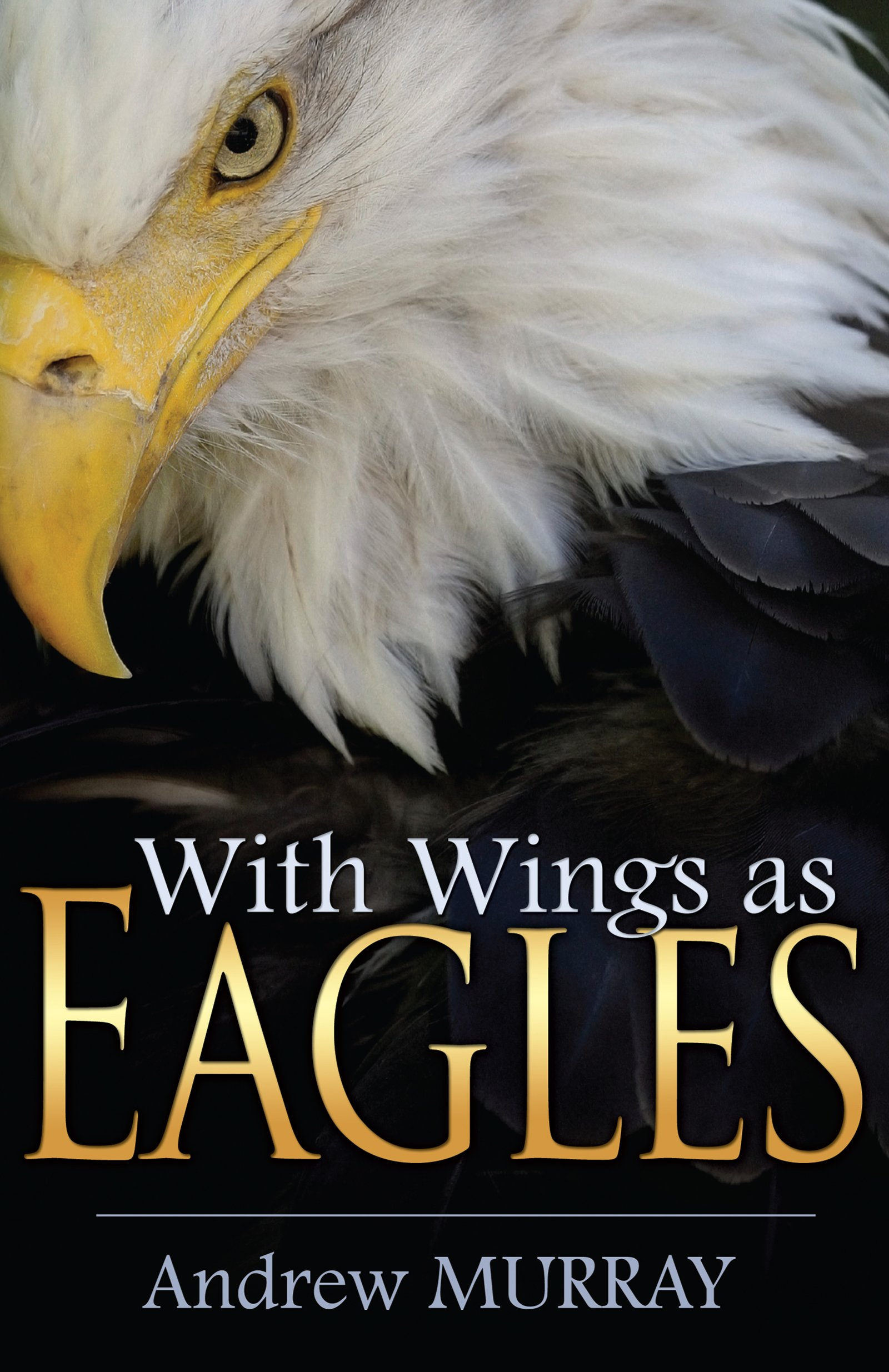 With Wings as Eagles pdf