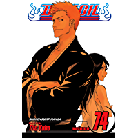 Bleach, Vol. 74: The Death and the Strawberry (English Edition)
