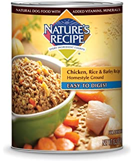 Natures recipe easy to digest wet dog food lamb rice barley natures recipe homestyle ground wet dog food forumfinder Images