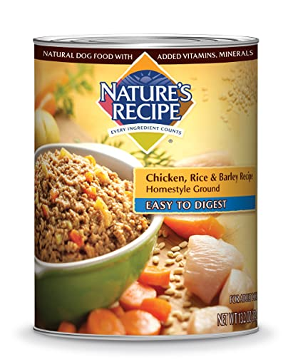 Natures recipe canned dog food for adult dog easy to digest natures recipe canned dog food for adult dog easy to digest chicken rice forumfinder Choice Image