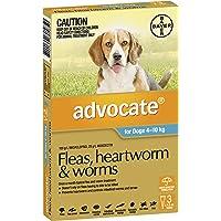 Advocate Flea, Heartworm and Worm Control for Medium Dogs, Aqua, 3 Pack