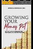 GROWING YOUR MONEY POT: Best Kept Hacks for breaking free from debts and getting wealthier