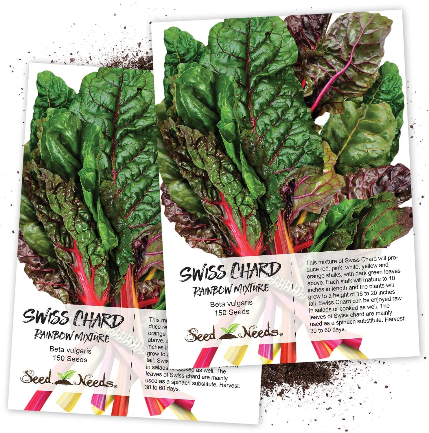 Amazon Com Seed Needs Rainbow Swiss Chard Beta Vulgaris Twin Pack Of 150 Seeds Each Non Gmo Chard Plants Garden Outdoor