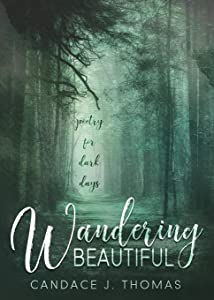 Wandering Beautiful: Poetry for Dark Days