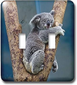 3drose Lsp 240664 2 Double Toggle Switch Australia Koala Bear
