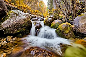 Utah Nature Photography 24x36 Inch Nature Art Print Bell's Canyon River in The Fall Unframed Print| Professionally Produced Wall Poster Direct from The Artist