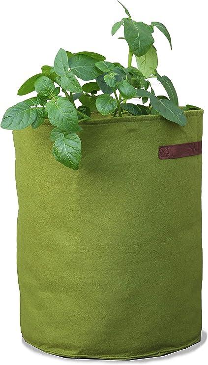 Tierra Garden 50-VIG12 Haxnicks Vigoroot Tomato/Potato Planter: Amazon.es: Jardín