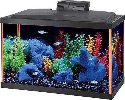 Aqueon Starter 10-Gallon Fish Tank Kit