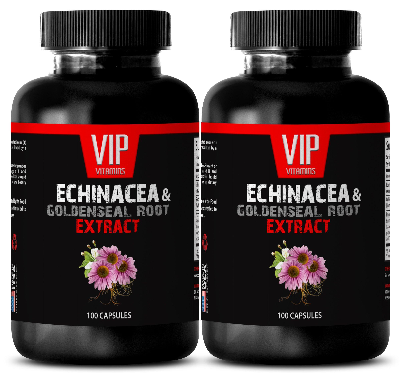 Immunity support - ECHINACEA AND GOLDENSEAL ROOT EXTRACT - Echinacea purpurea herb - 2 Bottles 200 Capsules