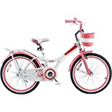 Royalbaby Jenny Princess Pink Girl's Bike with Kickstand and Basket, Perfect Gift for Kids, 20 inch wheels (no training wheels)