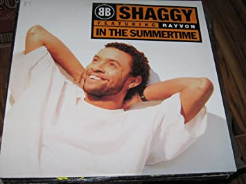 Shaggy Feat Rayvon In The Summertime Music
