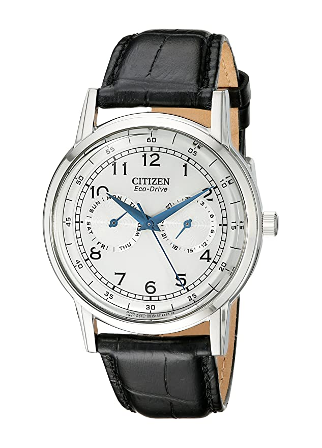 Citizen Men's AO9000-06B Eco-Drive Stainless Steel Day-Date Casual Watch Review