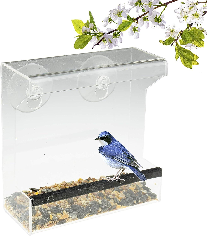 Comedero Transparente para pájaros - con Fuertes ventosas y Recipiente para Semillas - Diseño de Caja para Aves Salvajes como pinzones, cardenales y Azulejos - Acrílico
