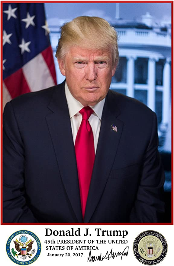 Donald J Trump 45th President of the United States of America OFFICIAL POSTER