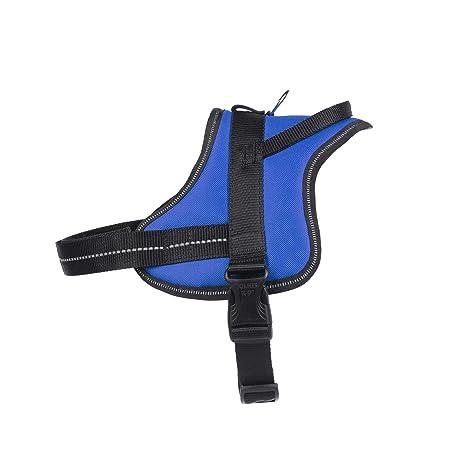 Julius-K9 Arnés, Azul, M: Amazon.es: Productos para mascotas