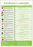 A3 novice gardener's/beginner's vegetable growing gardening calendar/poster. Ideal small gift for mother's day, father's day, classrooms or schools offering horticultural lessons. Laminated (not encapsulated, please read description for differences between lamination and encapsulation) or plain paper.