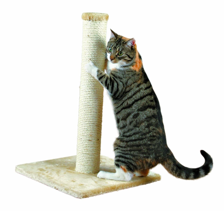 Rascador para gatos por solo 14,99€