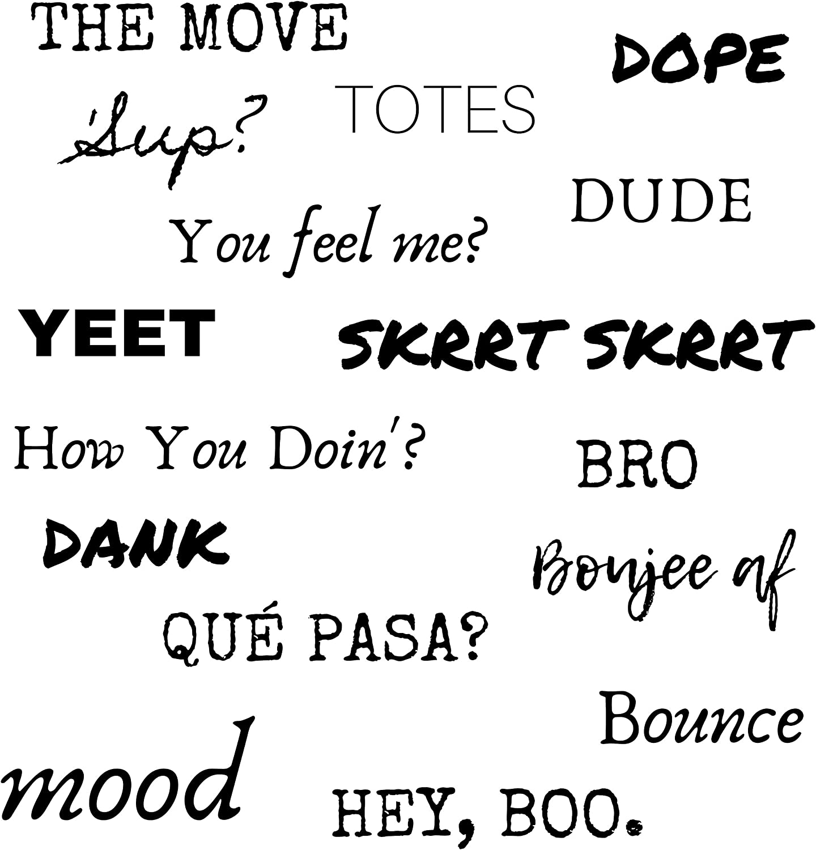 Slang Word Stickers - Set 1 - Waterproof, Large, Funny, Slang Words Decals - Laptop, Skateboard, Water Bottle