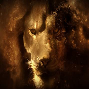 Amazon Com Lion King Hd Live Wallpaper Appstore For Android