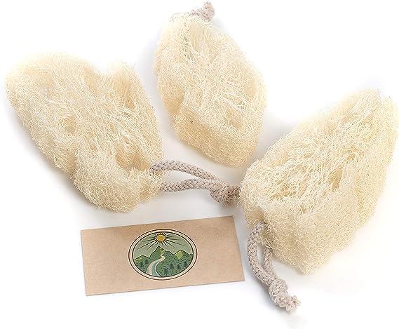 Esponja de cocina Luffa, Egipcio Luffa Esponja de lavado, Esponja ...