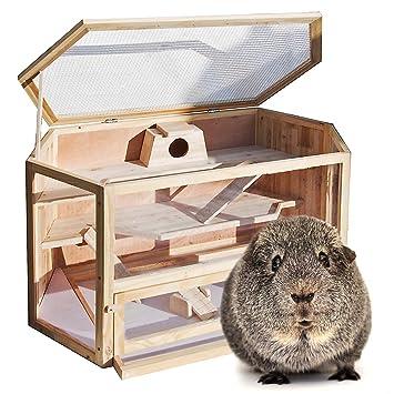 Jaula Caseta XXL madera hámster roedores animales pequeños ratón rata conejera tipo casa: Amazon.es: Productos para mascotas